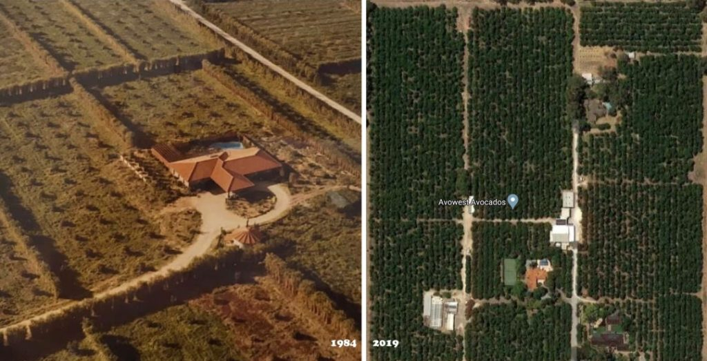 Avowest Farm in 1984 and 2019