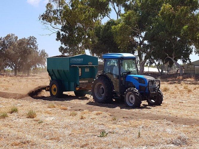 Planting Avo Tree - Spreading Mulch